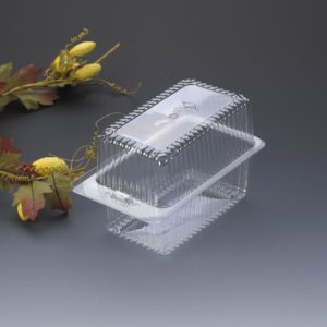 BZ04 cake container