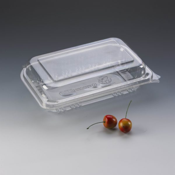 Salad Container